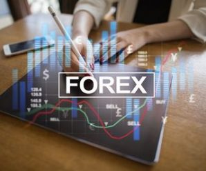 The Basic Facts of Forex Blog